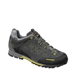 Men's Shoes Ridge Low WL GTX