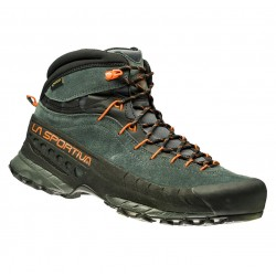 Trekking shoes TX 4 Mid GTX