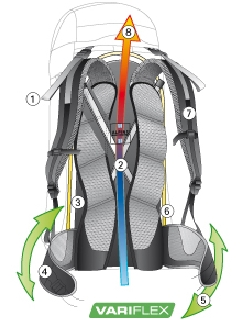 deuter-alpine-back-system.jpg